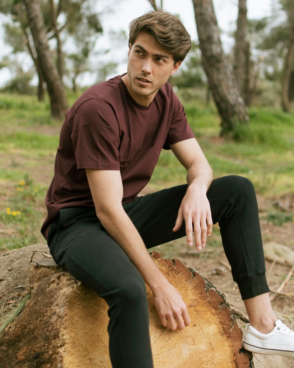 Alex F. – Six Management Models and Talents (29)
